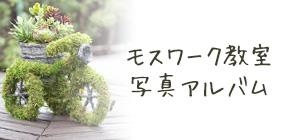 モスワーク教室写真アルバム